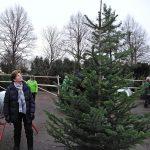Weihnachtsbäume bei der Firma Walker