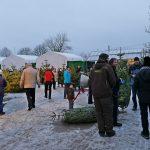 Erfolg beim Weihnachtsbaumverkauf